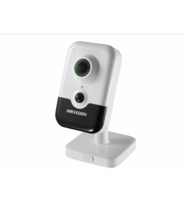 CAMERA HIKVISION DS-2CD2463G0-IW